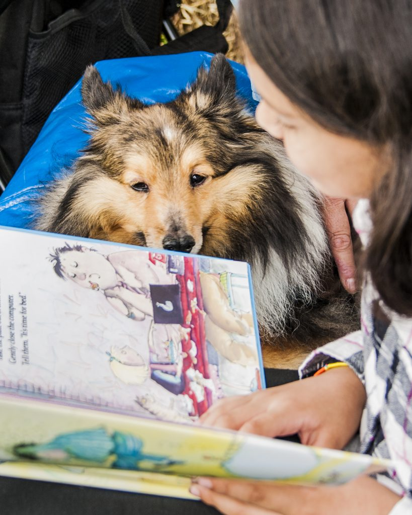 readingdog_childrens_book_festival_2016_05