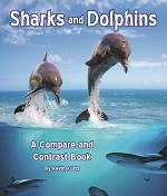 Kurtz Sharks and Dolphins